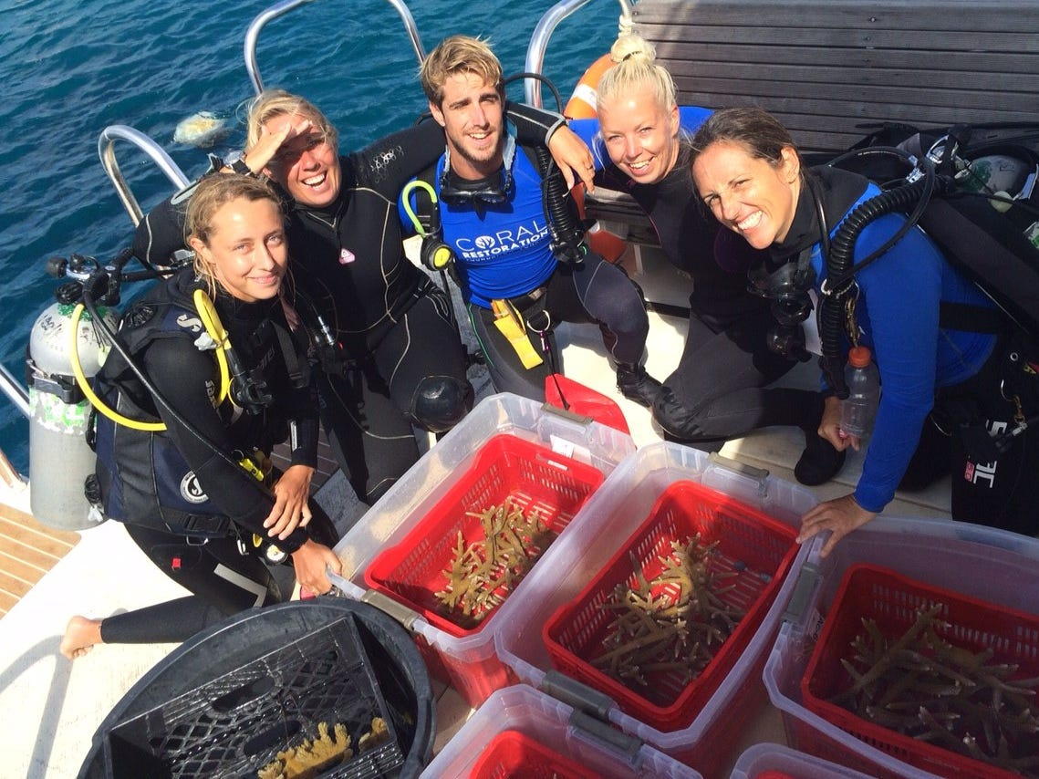 On Bonaire, one of the most eco-astute islands in the Caribbean, Coral Restoration Foundation is a nonprofit volunteer group that builds and restores elkhorn and staghorn coral that have been damaged.