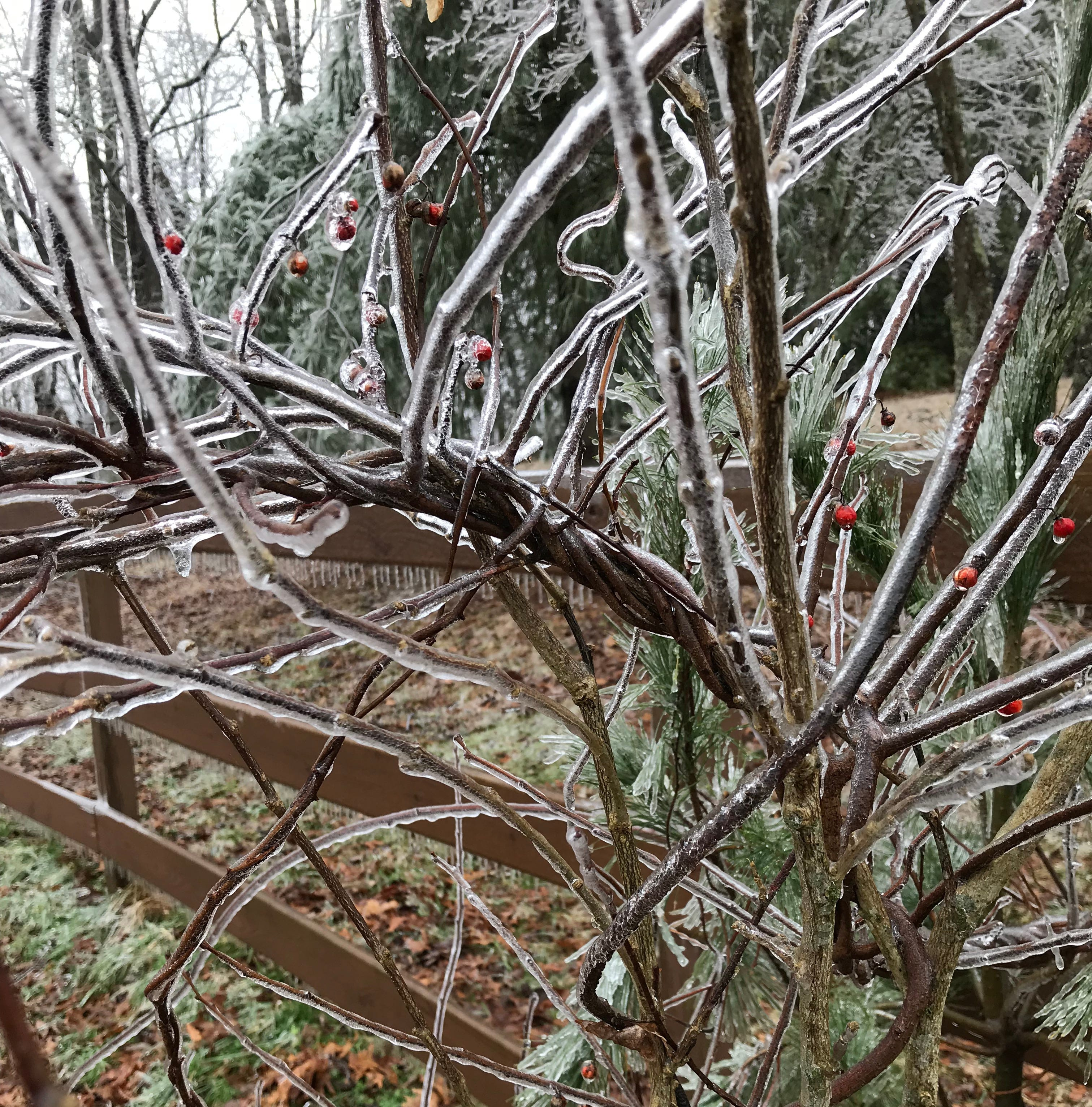 Potentially 'significant' ice storm headed toward WNC