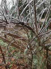 Freezing rain is likely to hit Western North Carolina overnight Tuesday into Wednesday.