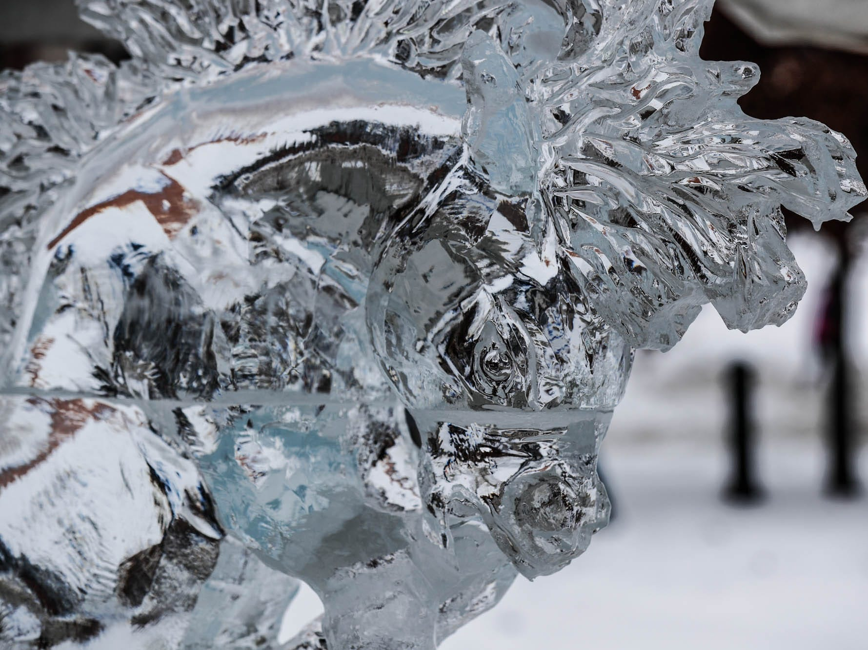 A horse ice sculpture created by Michael Stoddart is on display during the second annual Carmel Festival of Ice, held at Center Green in Carmel Ind. on Sunday, Jan. 13, 2019.