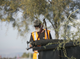 Robert Cutlip clips tree branches at the Grand Canal Linear Park as part of the Phoenix Rescue Mission's Glendale Works program on Jan. 7, 2019 in Glendale, Arizona.