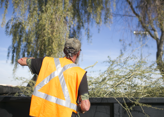 Robert Cutlip clips tree branches at the Grand Canal Linear Park as part of the Phoenix Rescue Mission's Glendale Works program on Jan. 7, 2019 in Glendale, Arizona. The Glendale Works program was started by Phoenix Rescue Mission in November of 2018 as an opportunity to get homeless persons working and making an income.