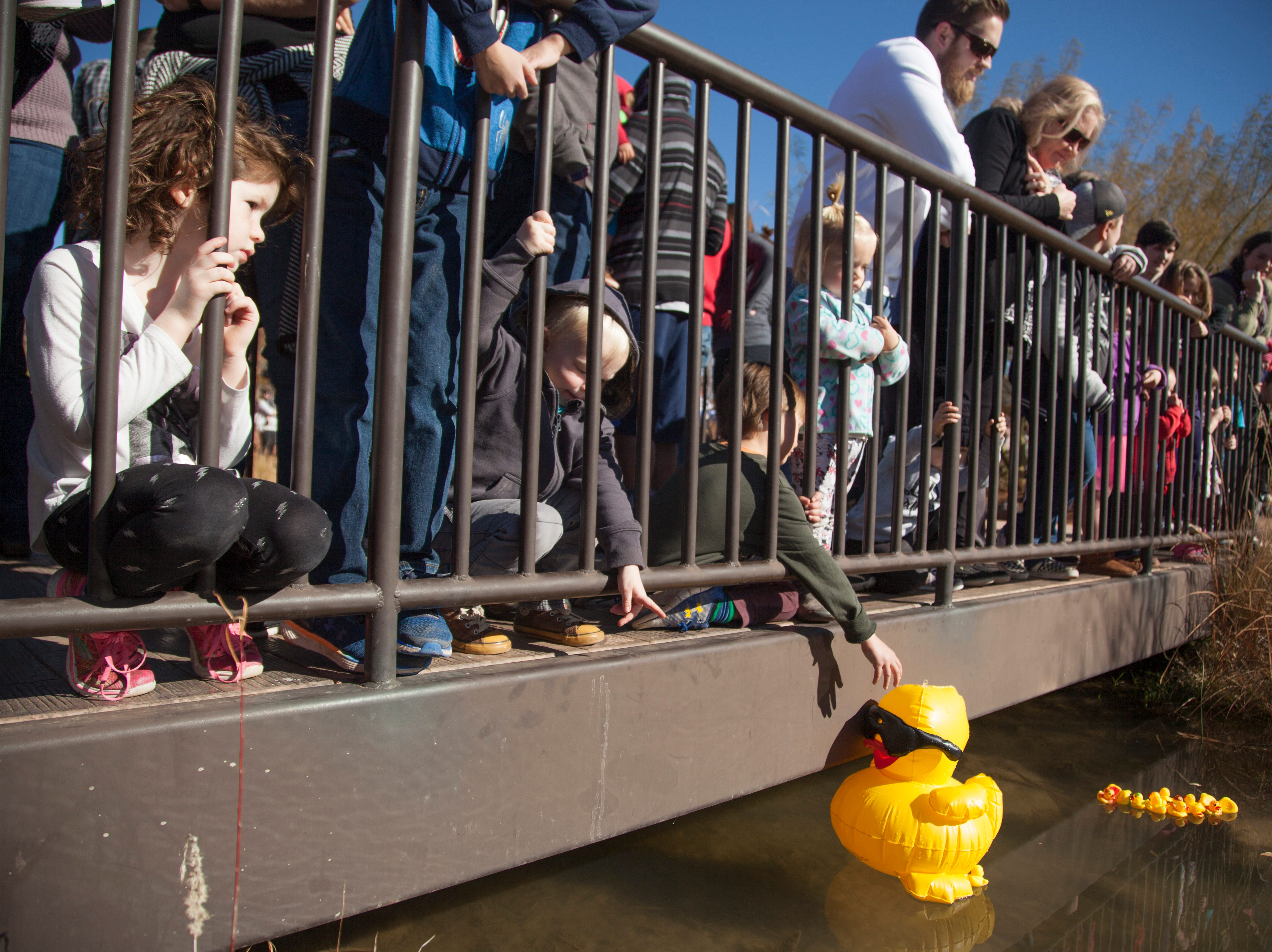 Local children decorate and race rubber ducks at the Red Hills Desert Garden Saturday, Jan. 12, 2019.