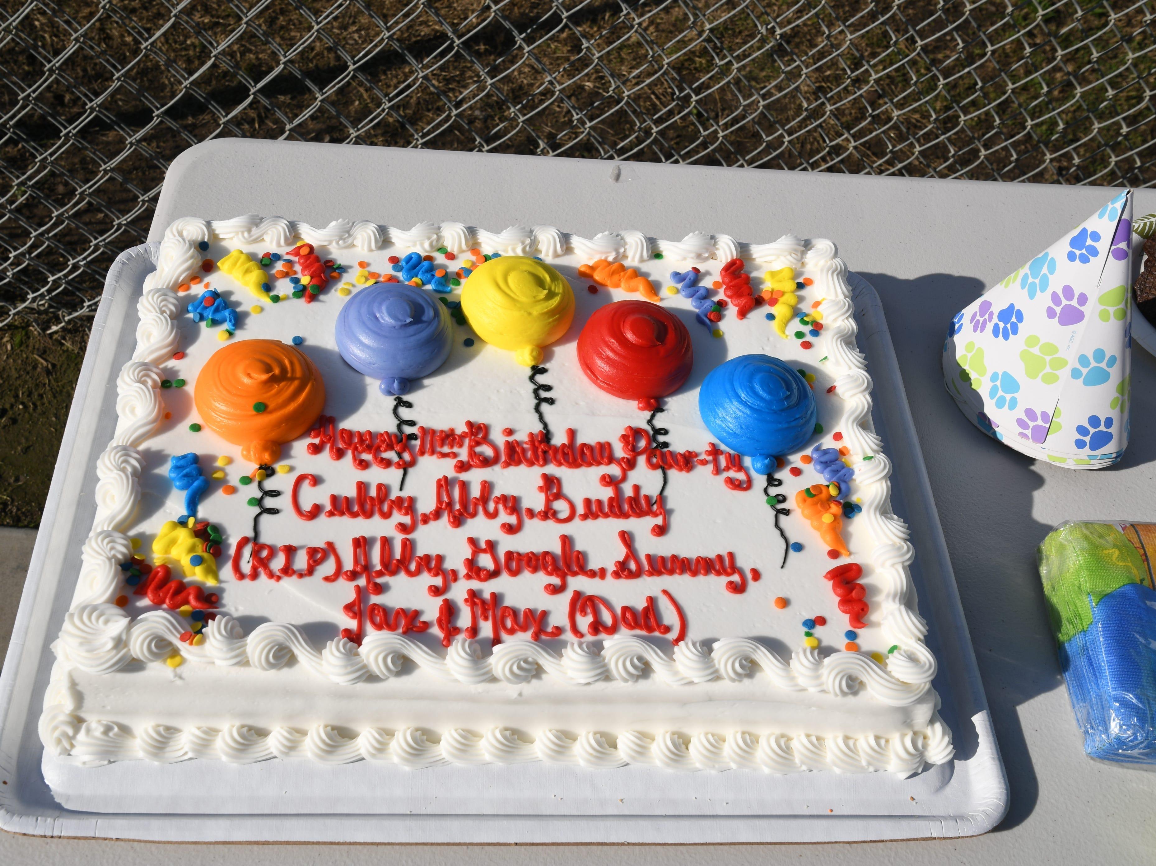 CubbyBear beat the odds to celebrate his 11th birthday on Jan. 12, 2019 at Visalia's Cody Kelly Bark Park.