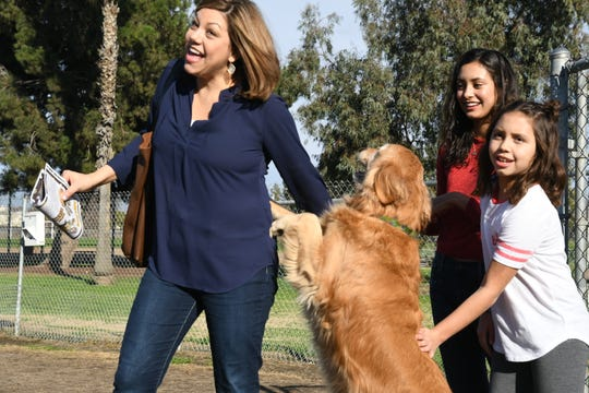 Sugar, a Tulare rescue and the newest member of the Brock-Wood family, is reunited with her original owners, the Flores family.