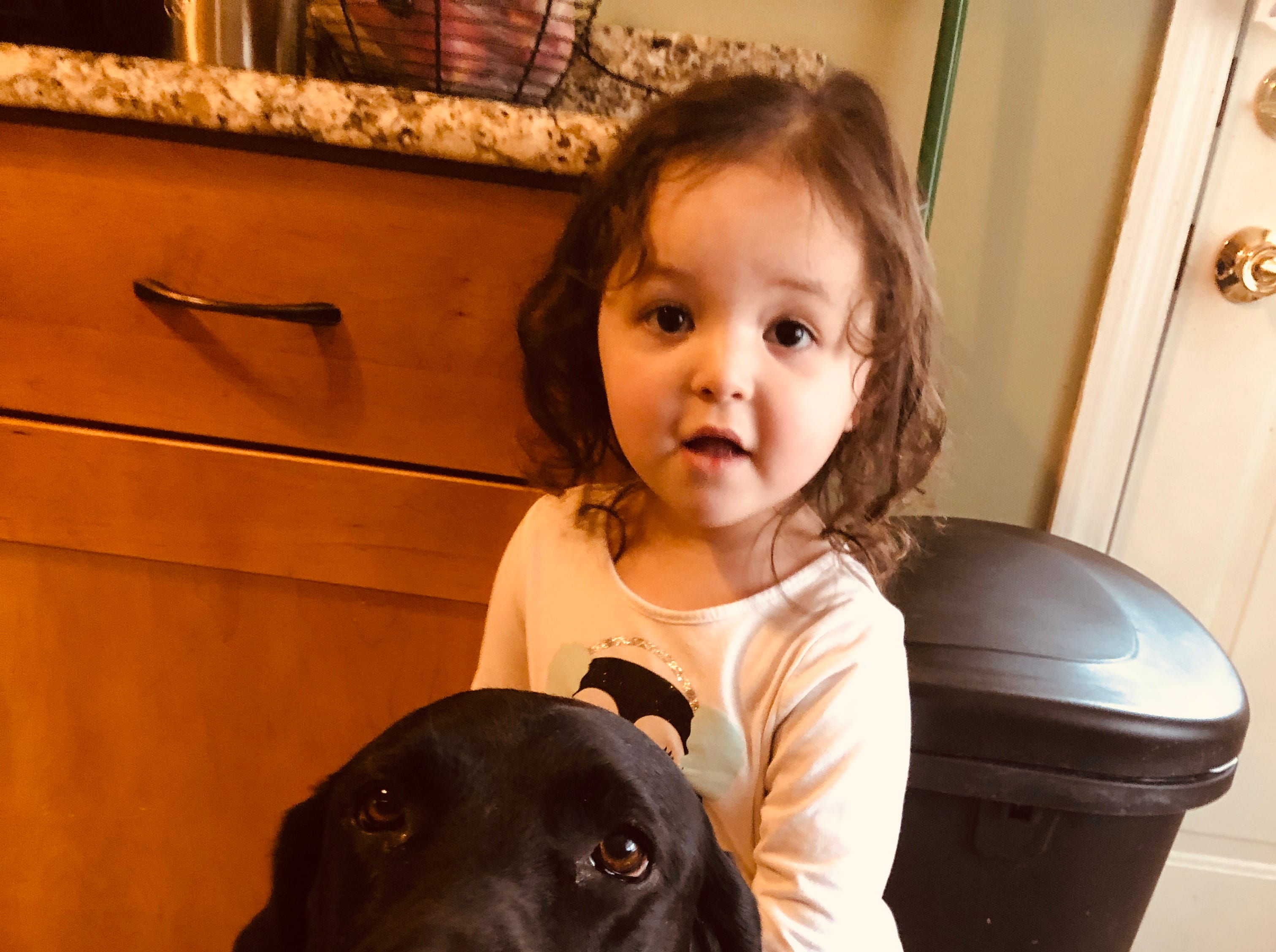 Mattie, a nearly 7-year-old bomb detection dog, with one of the children at the Old Bridge home where the dogs lives with his K9 handler Seamus Fennessy.