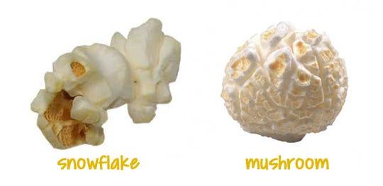 Popcorn comes is two varieties: snowflake and mushroom.
