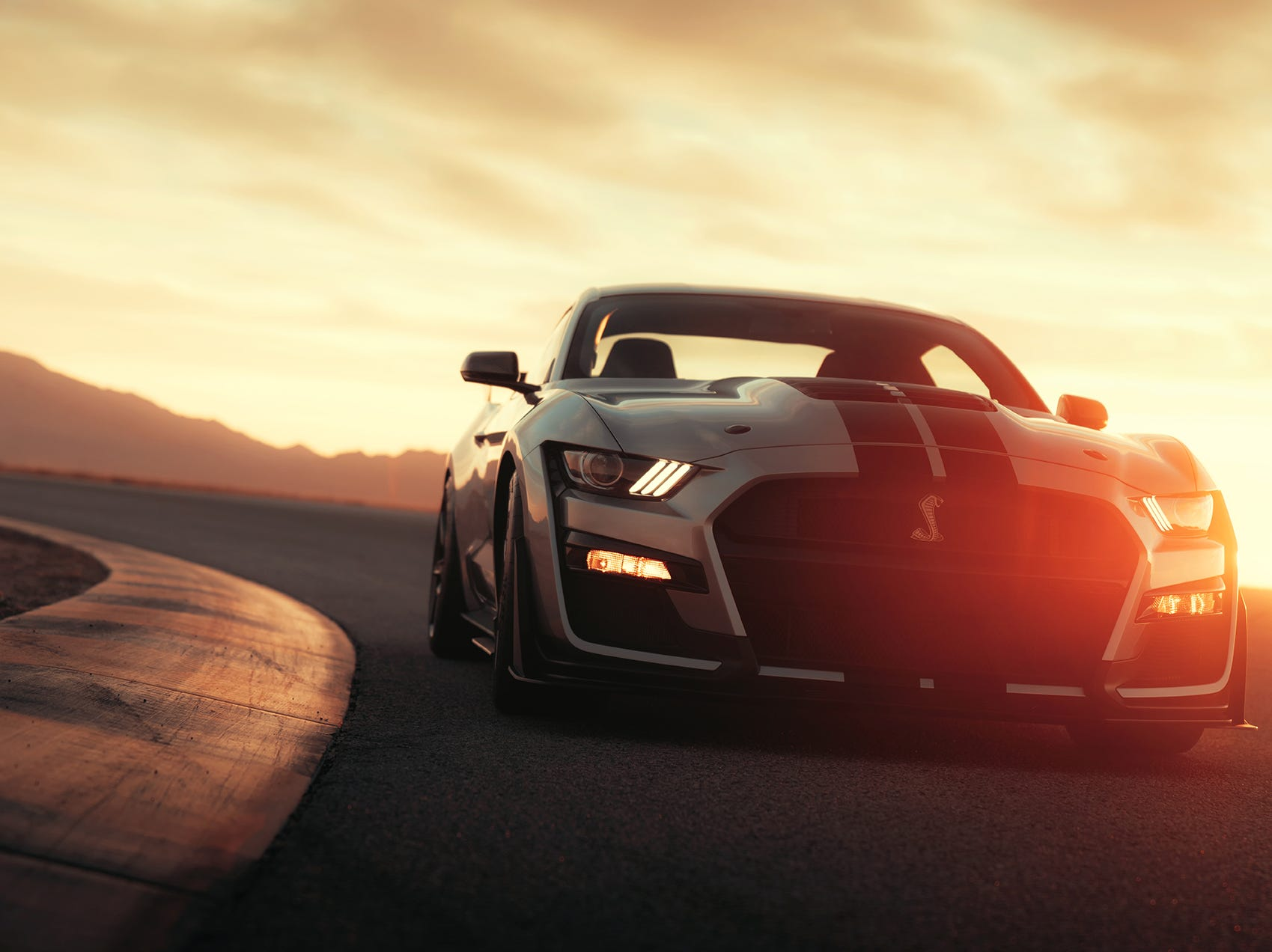 The all-new Shelby GT500.