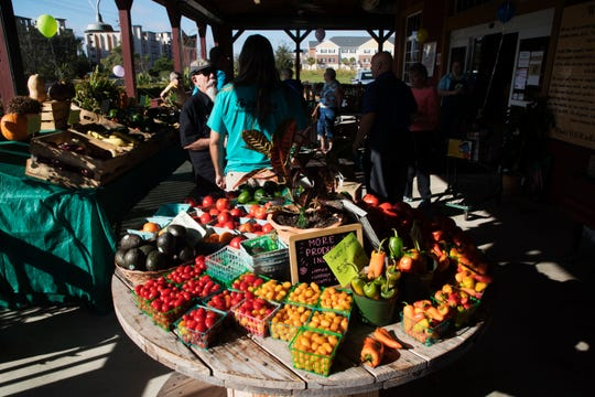 Plenty of fresh produce is available at the Sunflower Discount Surplus Market on Hancock Bridge Parkway in North Fort Myers.