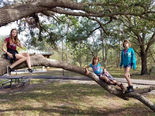 Alana Tamplin, 12, far right, her younger sister Brooklyn Tamplin (center) and another sister, Skye Tamplin, left.