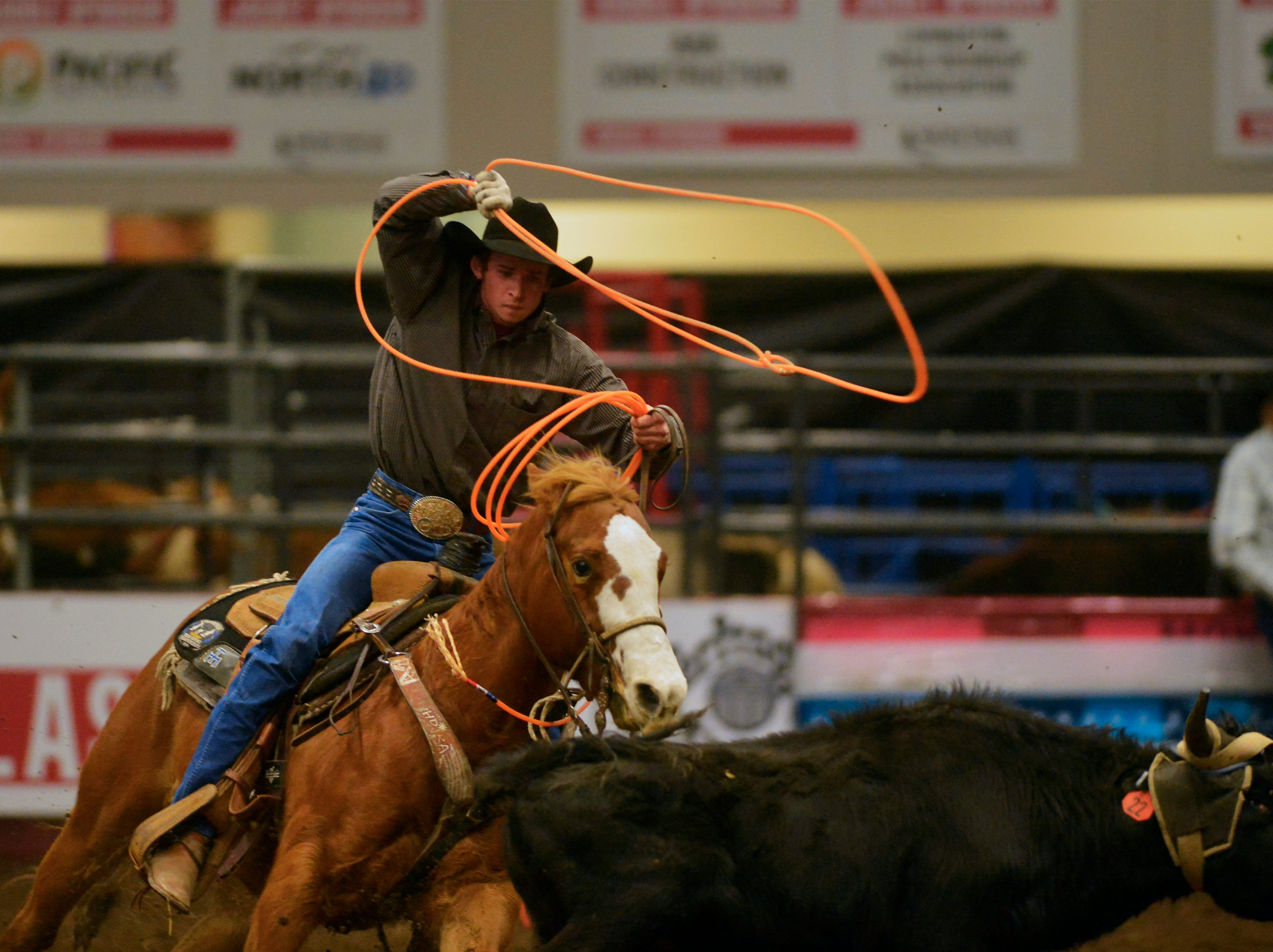 Matt Williams attempts to complete the run in the team roping event at the Montana Pro Rodeo Circuit Finals in the Pacific Steel and Recycling Four Seasons Arena, Friday, January 11, 2019.