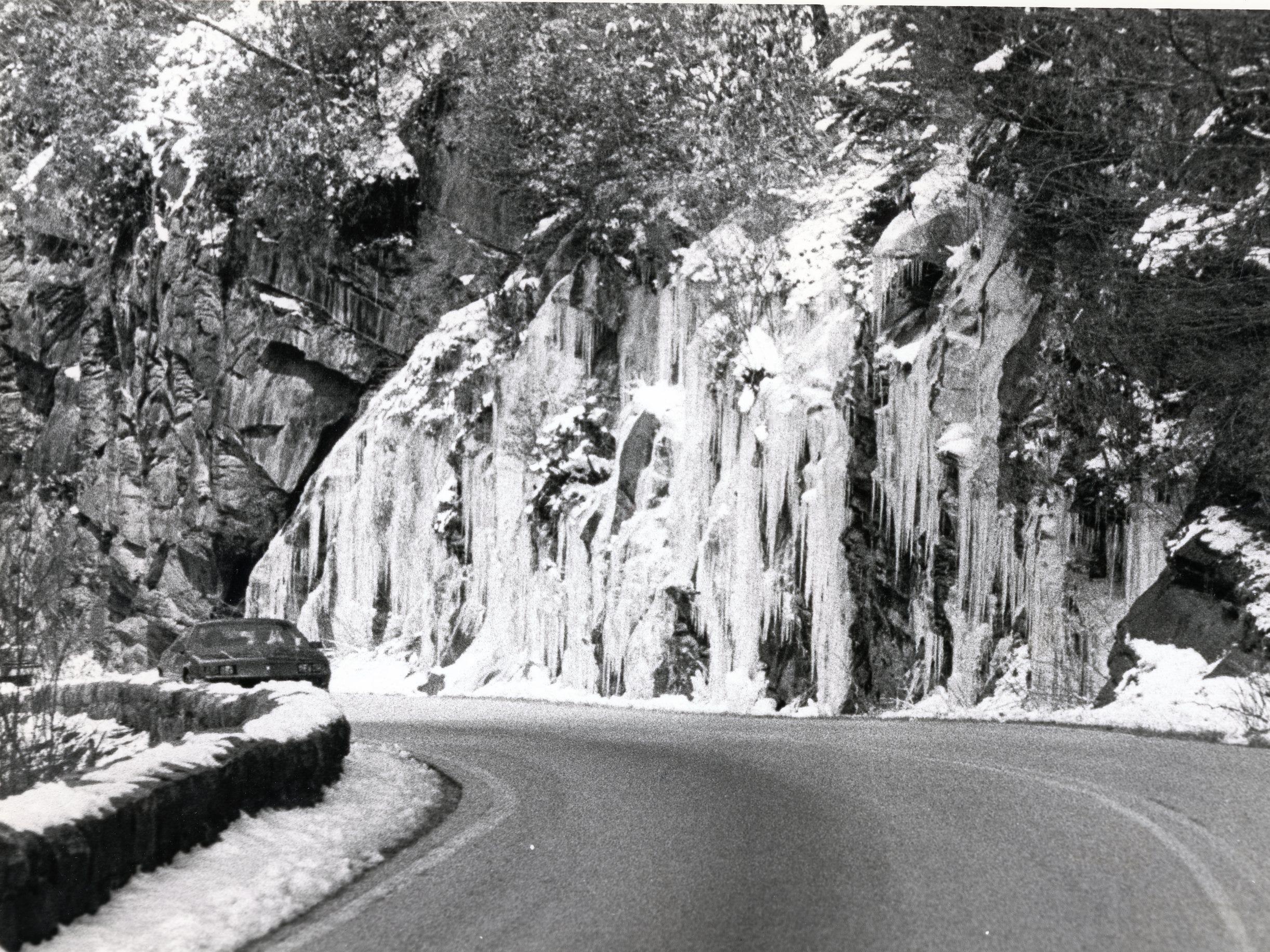 Highway 441 near Newfound Gap, April, 1983.