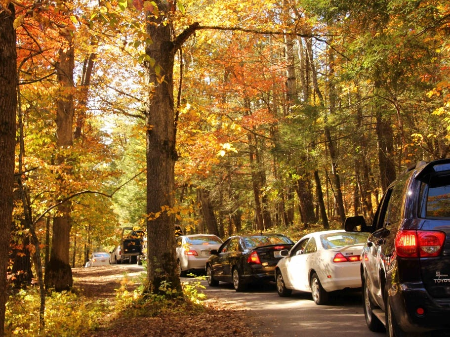 Traffic on the Cades Cove Loop is seen in October 2012 in the Great Smoky Mountains National Park.  The park recorded 650,180 vehicles on the Cades Cove Loop in 2012 according to spokeswoman Molly Schroer.  (Warren Bielenberg/Special to the News Sentinel)