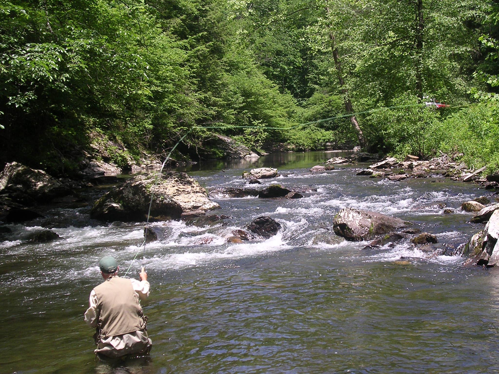 """Carl Penird of Marion, Ind., enjoys a day of trout fishing on the Little River inside the Great Smokey Mountains National Park. The Little River will be the beneficiary of a fund-raising event called Troutfest Saturd and Sunday, June 5-6, at the Townsend Visitors Center. Penird is retired from the electronics industry and stopped off for a little fishing en route to a wedding in Virginia. On this day Penird caught about a half-dozen trout. Two of those he called """"keepers,"""" but he released them anyway."""