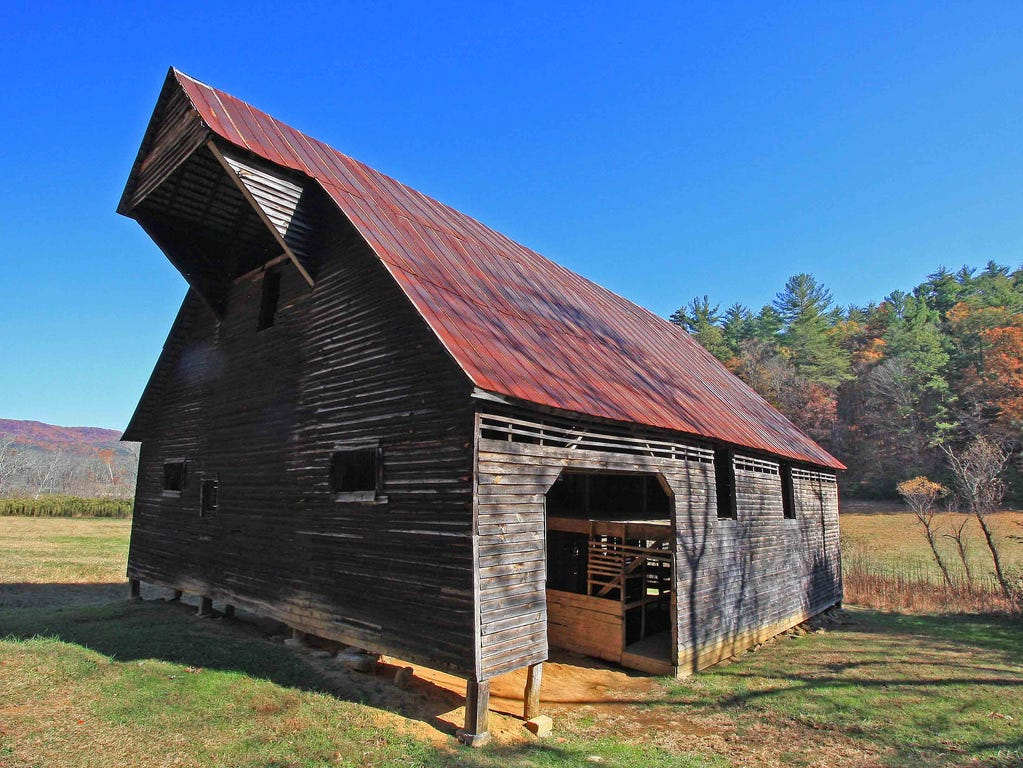 An undated photograph of the Caughron barn in the Great Smoky Mountains National Park. On Christmas Eve, the 98-year-old structure in Cades Cove collapsed during a storm. The barn will likely not re-built according to Park officials. 'There's a limit to how much new material we can use and still maintain the barn's historic value,' said park spokesman Bob Miller.
