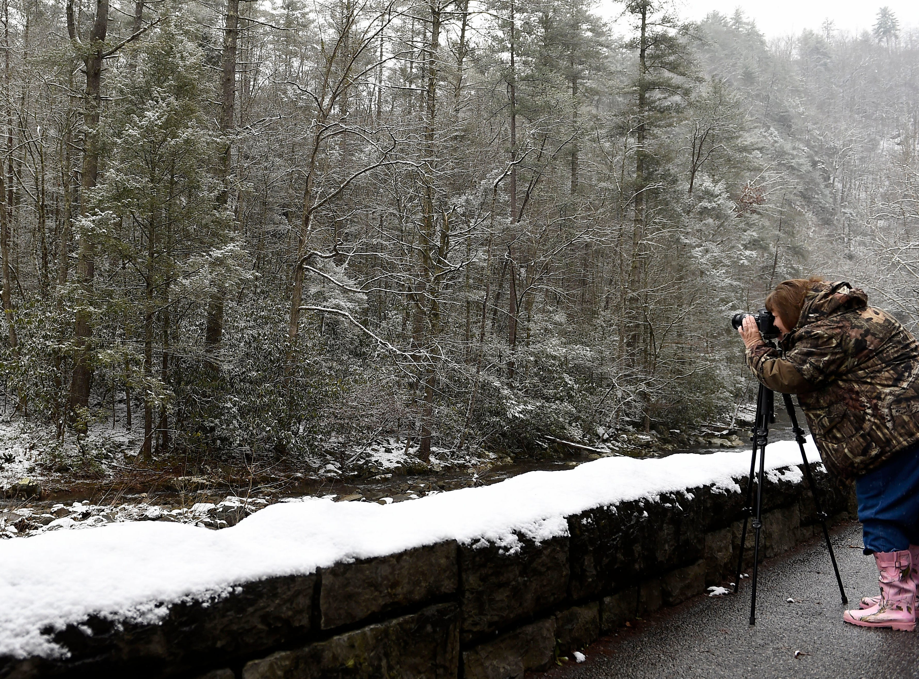 Faye Sykes of Clintwood, Va., takes photographs in the Great Smoky Mountains National Park Tuesday, Jan. 27, 2015. The Smokies is off to strong start for 2015 with a record number of visitors recorded for January. (AMY SMOTHERMAN BURGESS/NEWS SENTINEL)