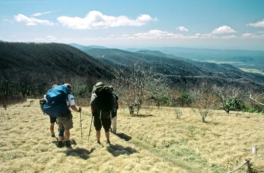 This part of the Appalachian Trail is in the Great Smoky Mountains National Park. The trail wanders over 2,200 miles through 14 states, including Pennsylvania.