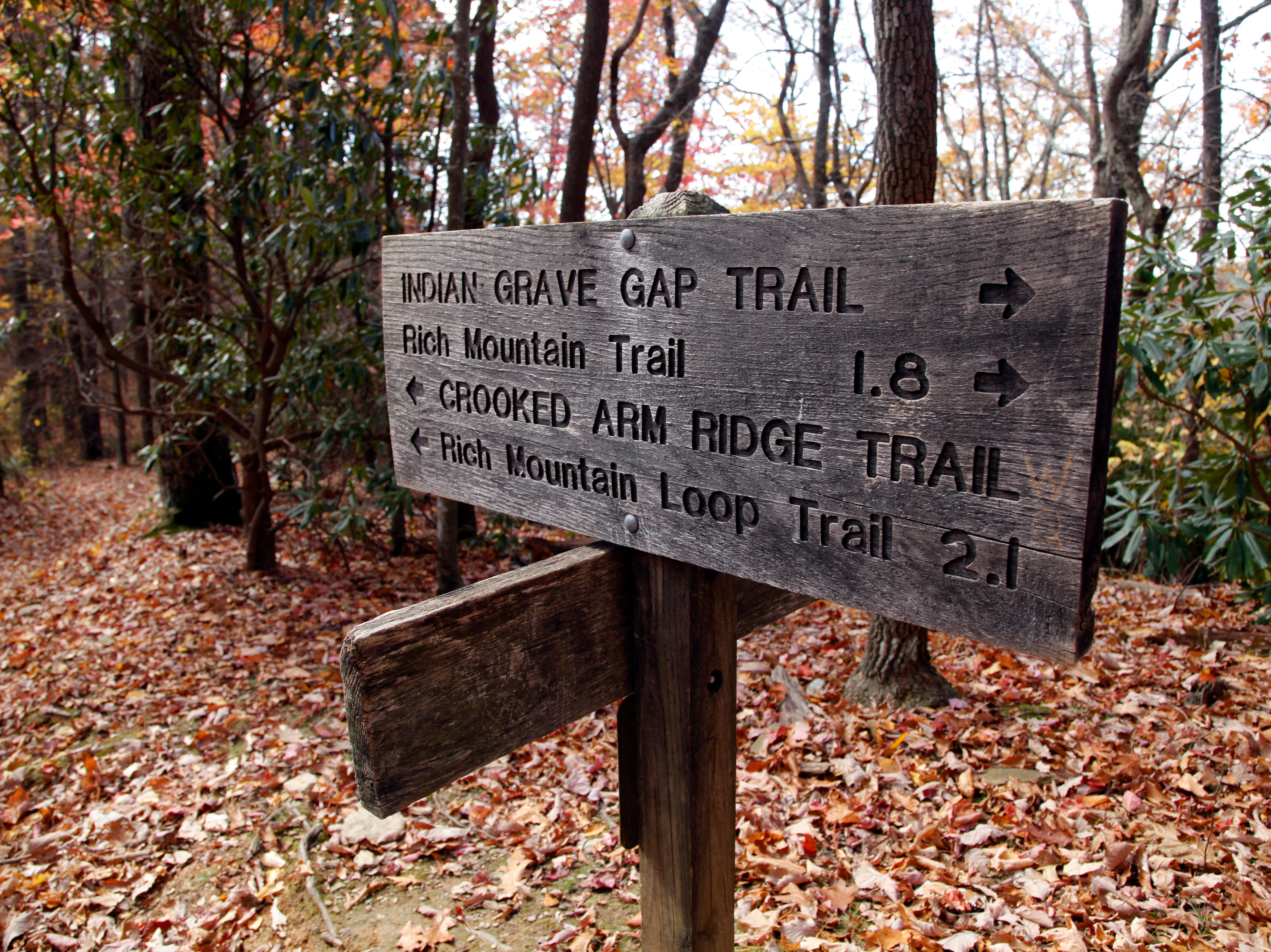 Hikers traveling on the 8.5 mile Rich Mountain Loop Trail need to pay attention to signs along the way as the hike coincides with the Indian Grave Gap and Crooked Arm Ridge Trails in the Great Smoky Mountains National Park near Cades Cove Wednesday, Oct. 26, 2011.  (ADAM BRIMER/NEWS SENTINEL)