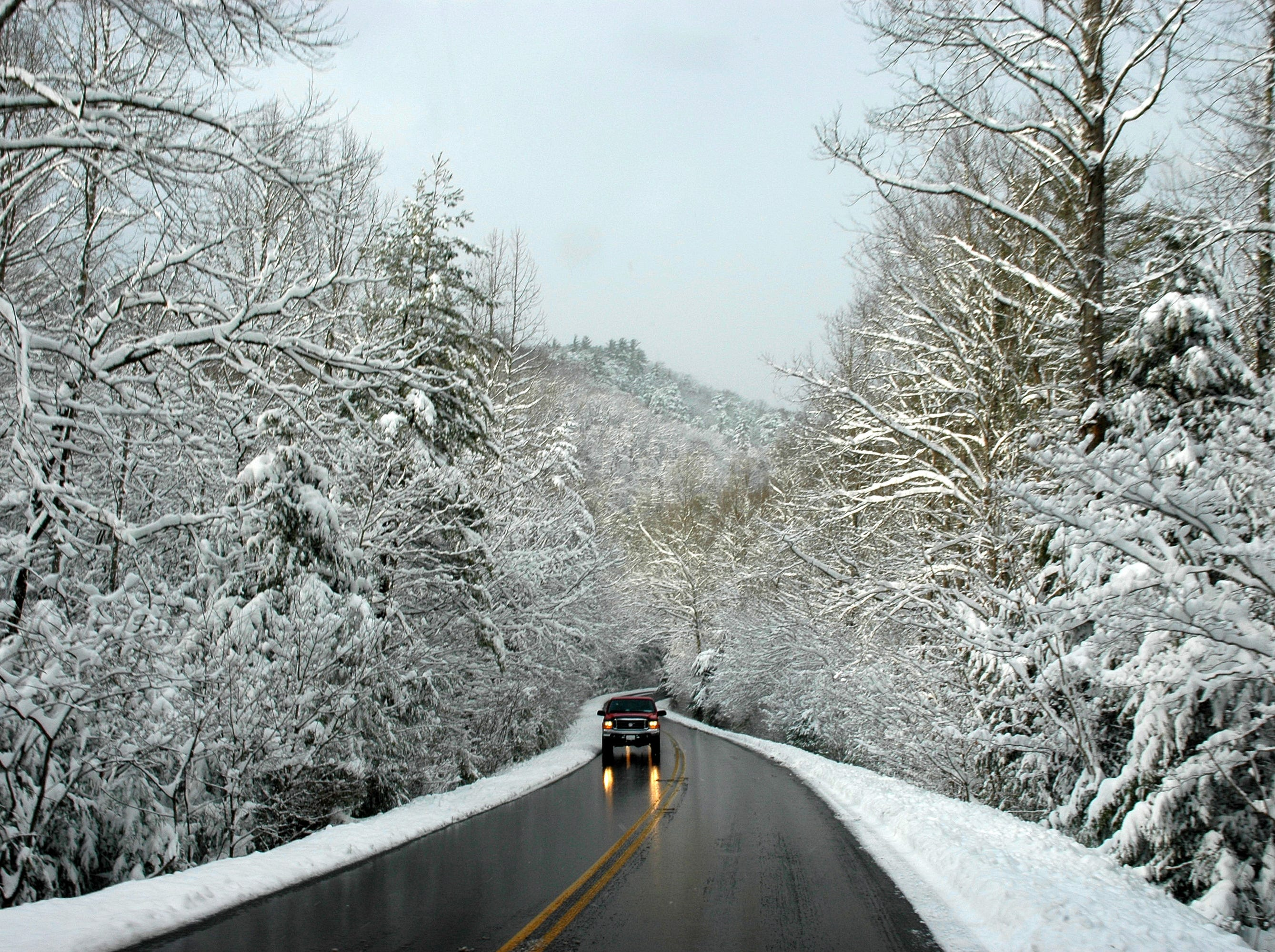The tree branches on the road to Cades Cove were hung with a think layer of snow Sunday afternoon as funseekers came to the Great Smoky Mountains National Park to enjoy the beauty and play in the snow. 2006 Robert Wilson