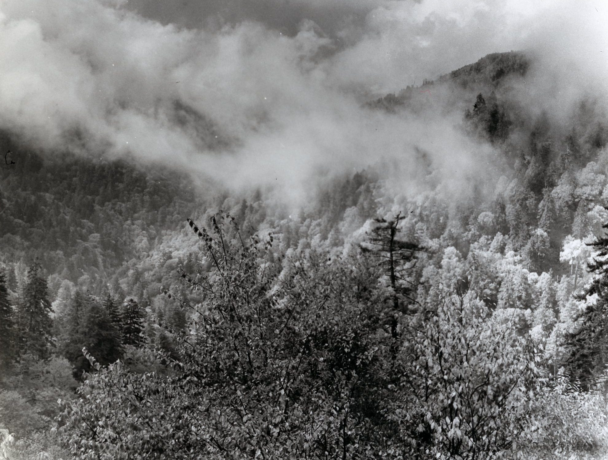 The Great Smokey Mountains, October, 1960.