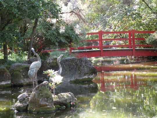 The Japanese garden at Micke Grove Park is a favorite gathering spot for locals.