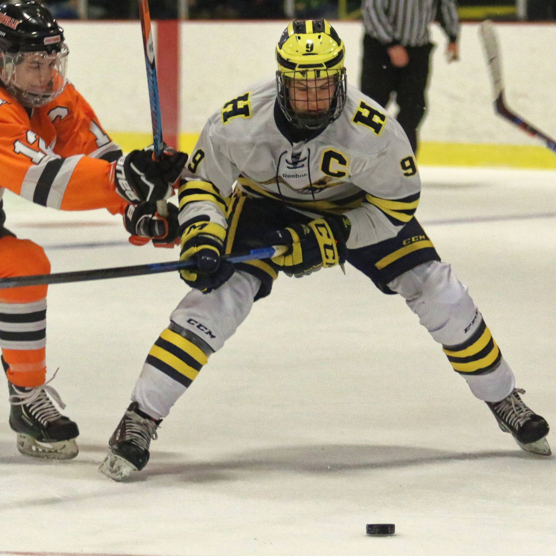 Top 5 Livingston County hockey players, midseason edition