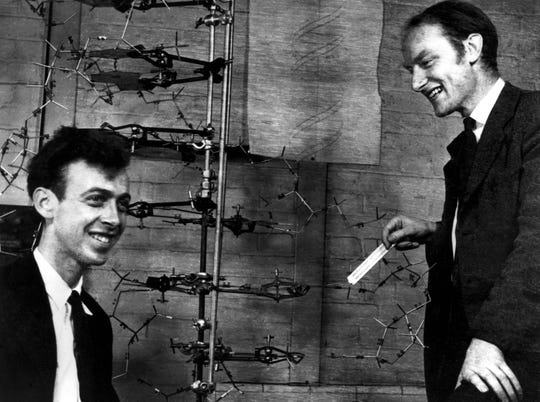 James Watson and Francis Crick stand with their model of the molecular structure of DNA in 1953. They shared the 1962 Nobel Prize for Medicine with Maurice Wilkins for the discovery.
