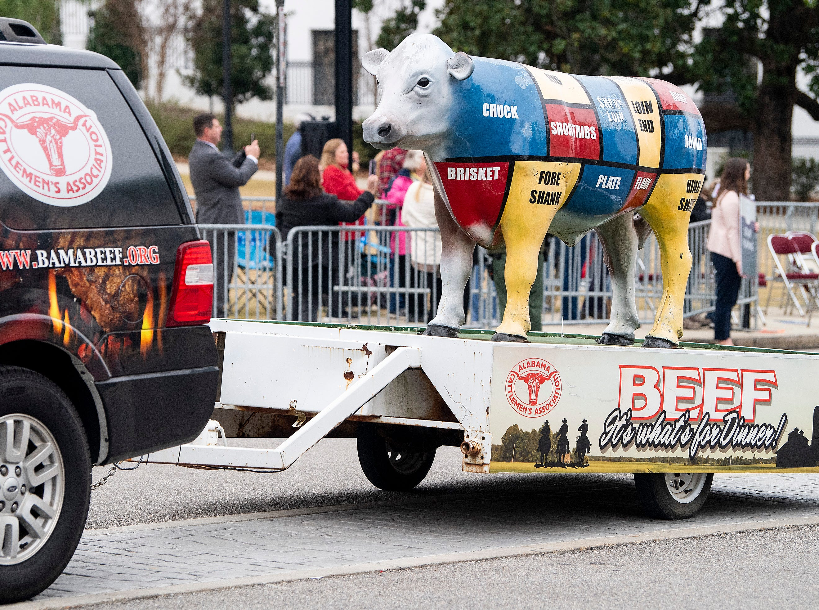 The Alabama Cattleman's Association cow is pulled in the Inauguration Parade for Governor Kay Ivey in Montgomery, Ala., on Monday January 14, 2019.