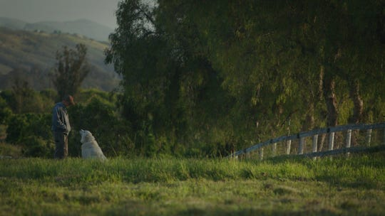 """Filmmaker turned farmer John Chester and Caya the dog share a moment in """"The Biggest Little Farm,"""" a documentary set at Apricot Lane Farms in Moorpark. The film will be released nationwide on May 10."""
