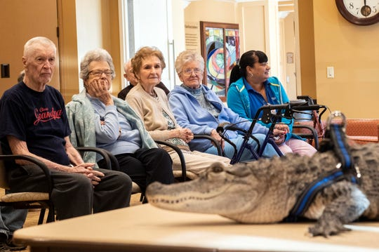 Residents of the SpiriTrust Lutheran Village at Sprenkle Drive, look at Wally, an emotional support animal, while his owner, Joie Henney, speaks to a crowd of about 20 people, at the SpiriTrust Lutheran Village at Sprenkle Drive, Monday, Jan. 14, 2019.