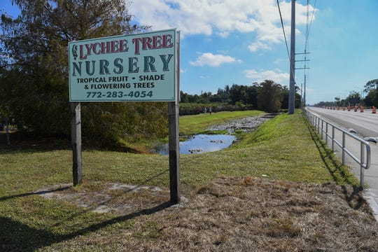 Lychee Tree Nursery is seen at 3151 South Kanner Highway on Monday, Jan 14, 2019, in Stuart. Costco Wholesale has proposing to build a store next to Lychee Tree Nursery on the south side of the business, where the large group of trees are seen in the background, along Kanner Highway.