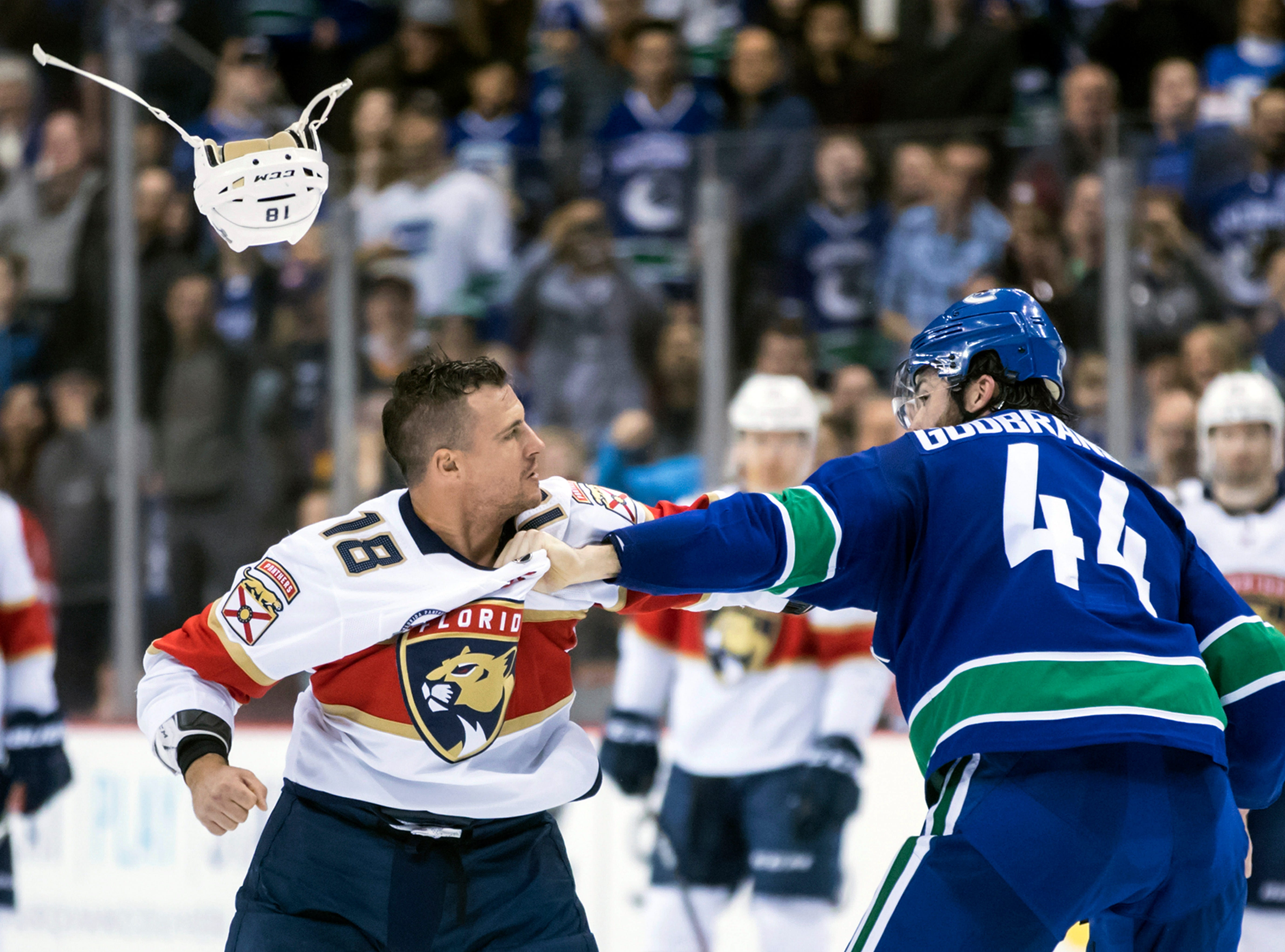 Jan. 13: Florida Panthers' Micheal Haley vs. Vancouver Canucks' Erik Gudbranson.