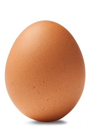 This stock image of a brown chicken egg looks very similar to the world's most-liked Instagram post.