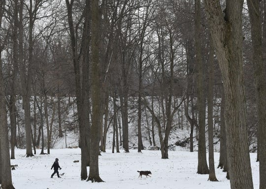 A dog is walked through the snow in Aumiller Park on a chilly Monday. High temperatures are staying around freezing until the weekend, when they are expected to drop into the teens.