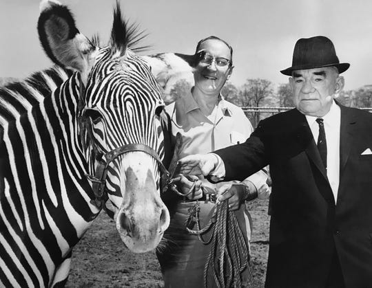 Ted O. Philpott, with the Grevy's zebra which he donated to the Indianapolis Zoo in 1964.