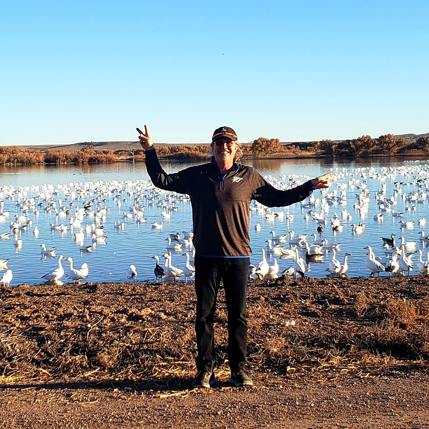Happy Camper: Watching geese, cranes and ducks in the Bosque