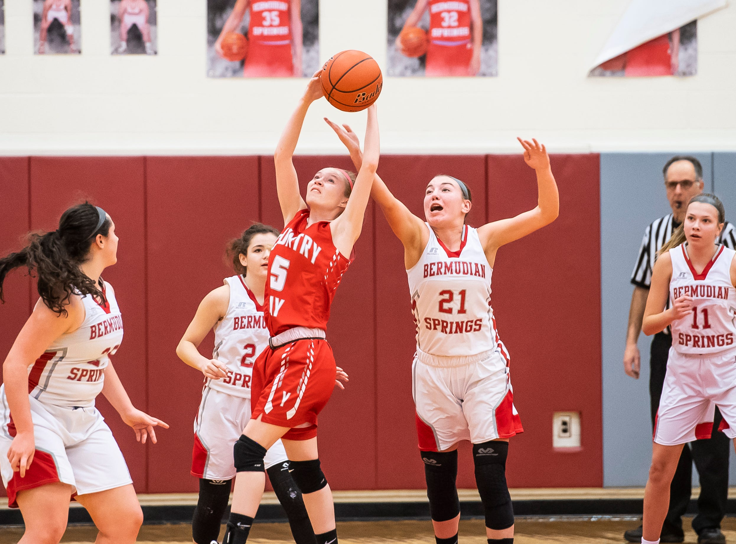 Bermudian Springs' Keri Speelman (21) knocks the ball from York Country Day School's Karrington Brown during a game at Bermudian Springs High School on Monday, January 14, 2019. The Eagles won 59-20.