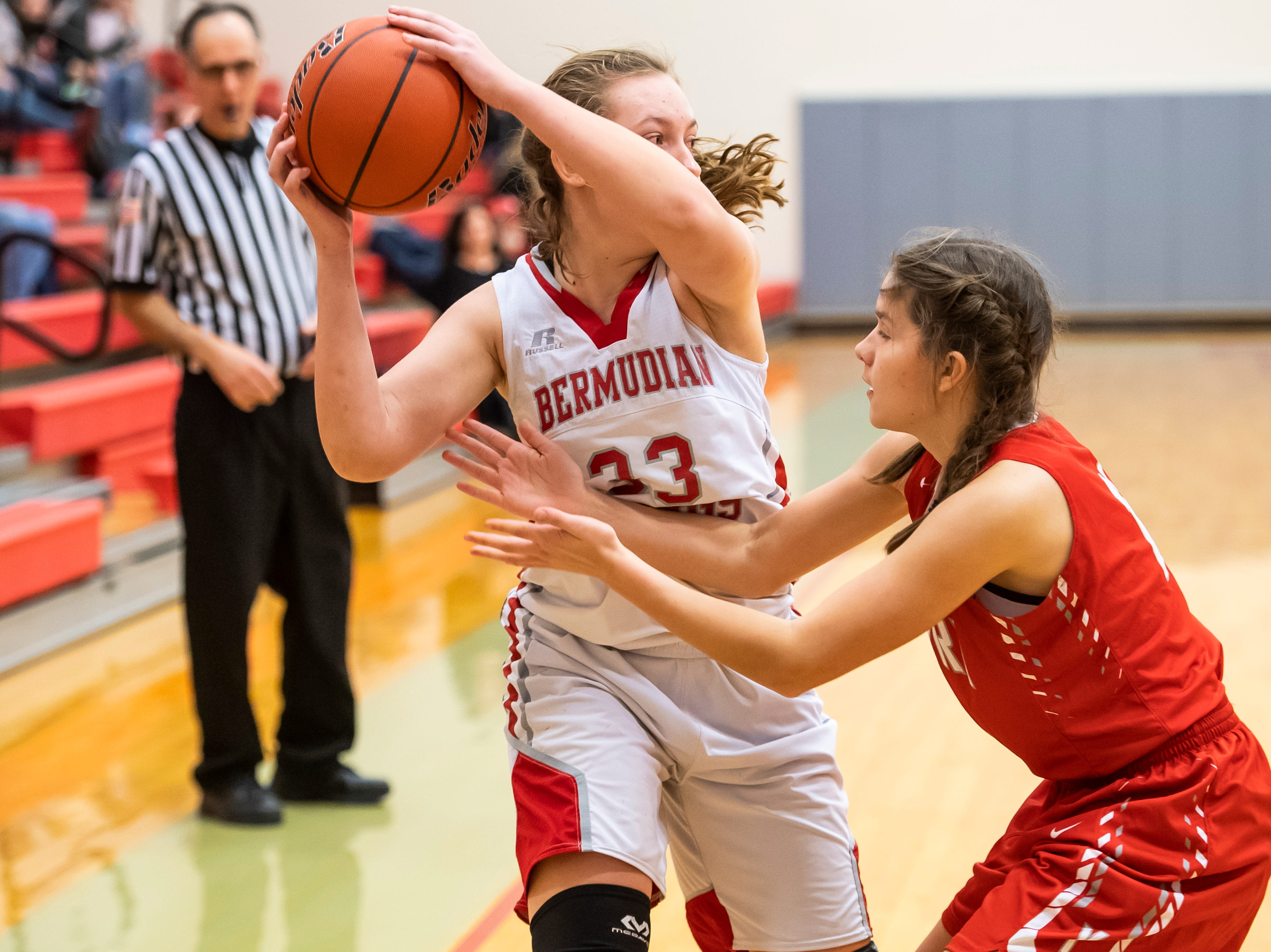 Bermudian Springs' Briella Riley holds the ball away from York Country Day School's Emily Haglin during play at Bermudian Springs High School on Monday, January 14, 2019. The Eagles won 59-20.