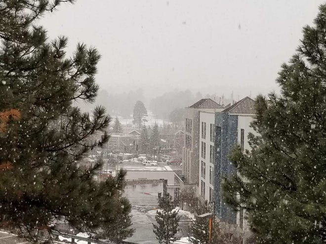 Snow falls in Flagstaff on the afternoon of Jan. 15, 2019.
