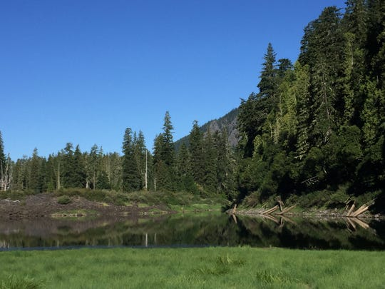 Linton Lake is a small and pretty pool in the Three Sisters Wilderness off McKenzie Pass.
