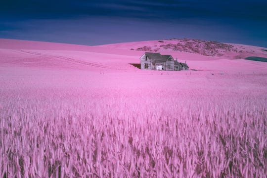 """Former Wichitan Thorpe Griner will debut 22 Infrared photographs in an exhibit beginning today and running through April 7 at the NorthLight Gallery in the Kemp Center for the Arts. The program is titled """"The Invisible Light: An Exhibition of Infrared Photographs"""""""