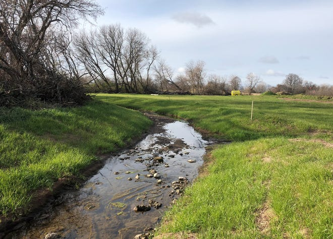 Greenville is seeking to recover its costs for the restoration of an illegally dredged stream on farmland formerly rented by Supervisor Mike Woods.