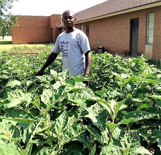 Cyprien Kilulu stands in the garden for refugees at St. James United Methodist Church.
