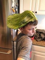Ben Keeling, of Johnston, grew a cabbage over summer of 2018 as part of the Bonnie Plants Cabbage Program for third-graders across the nation. Keeling won the competition in Iowa with a 12-pound vegetable and received a $1,000 scholarship. The outer leaves of his cabbage were big enough to fit over his head.