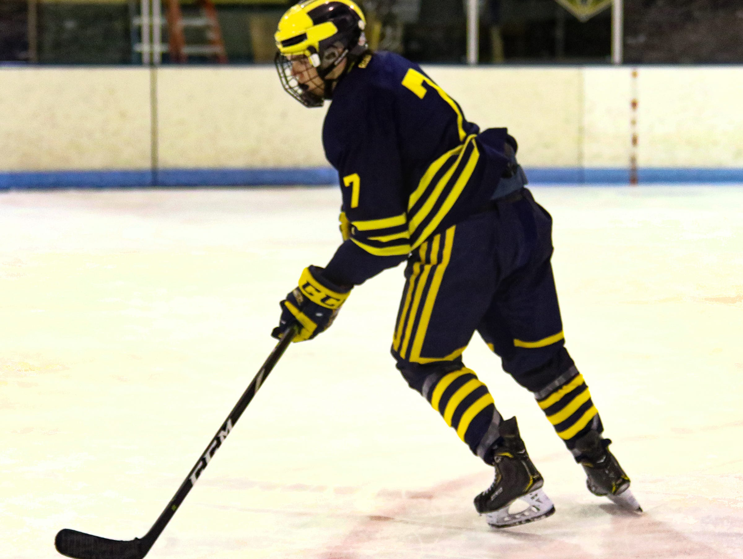 Defenseman Grant Briggs scored a goal for Hartland in a 7-1 victory over Howell on Tuesday, Jan. 15, 2019.
