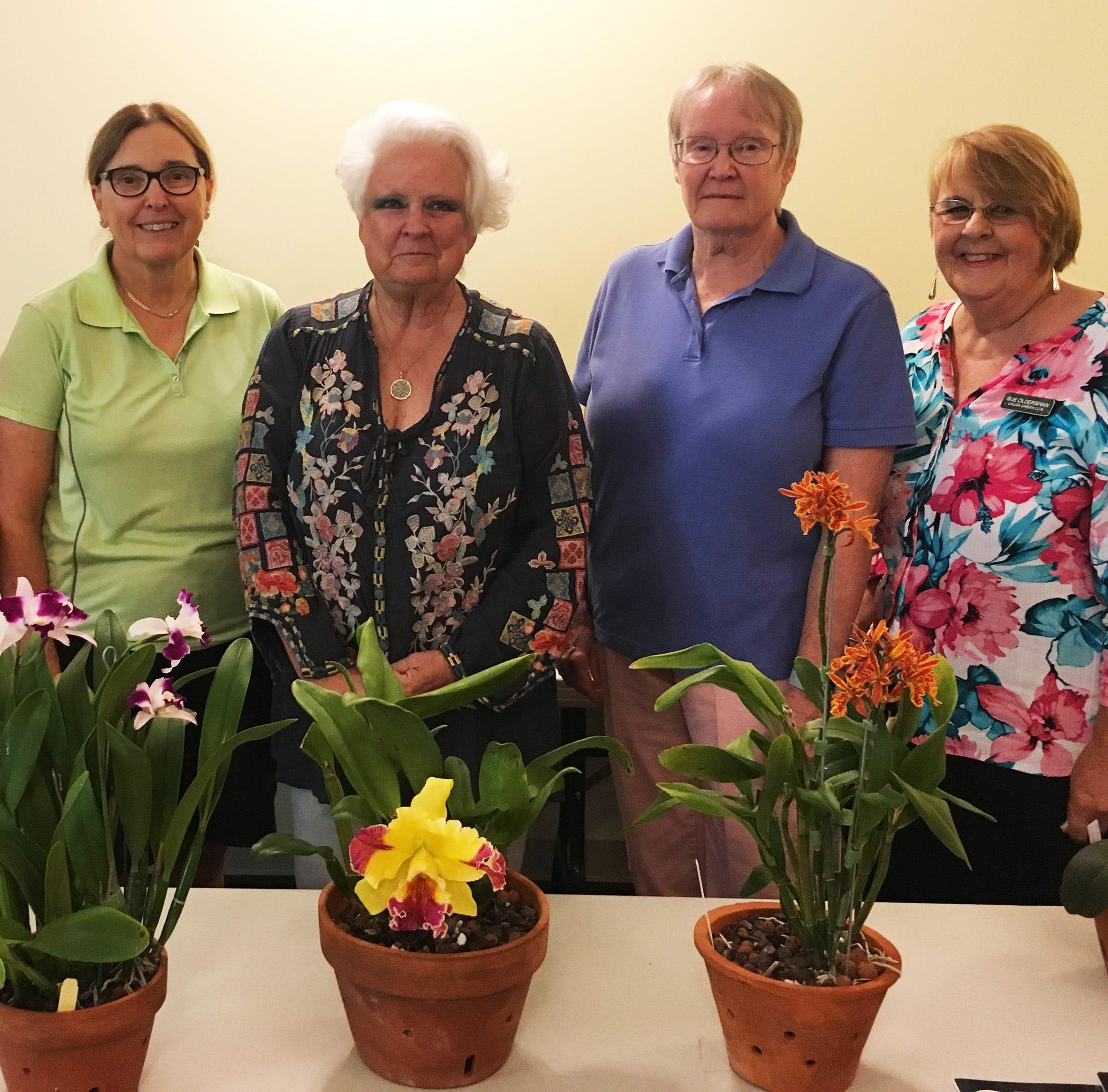 Club Briefs: Garden Club talks orchids, more