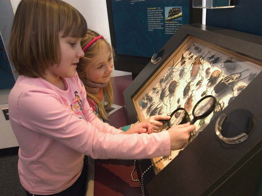 There are multiple free days at Milwaukee museums this February, including Feb. 7 at the Milwaukee Public Museum.