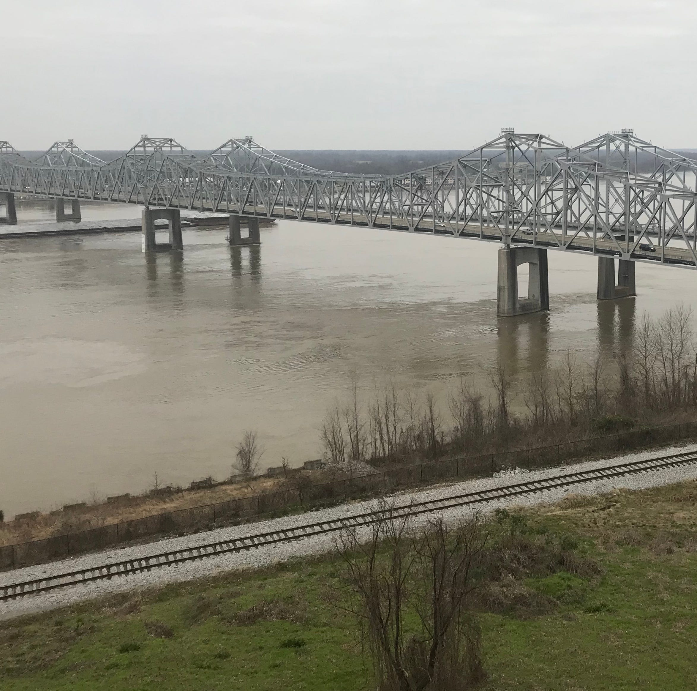 Miss. River flooding from Vicksburg to Baton Rouge; deer seek high ground