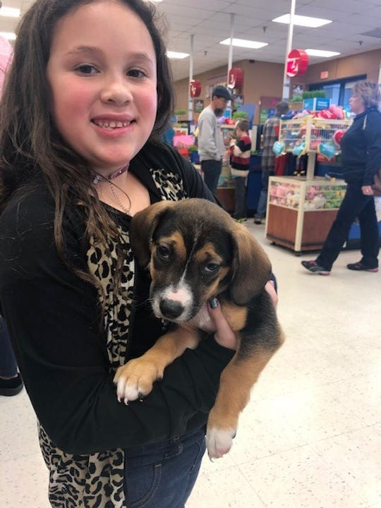 Brielle Martin, the daughter of Junior Humane Society volunteer Ashley Martin, poses for a photo with Frosty, a beagle puppy up for adoption, during a PetSmart adoption event.