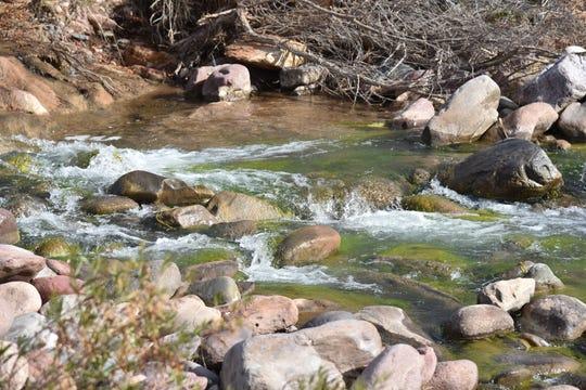 Tiny waterfalls in Tonto Creek.